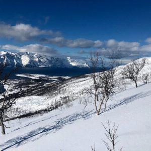 Artic Lyngen Ski Nord Norge